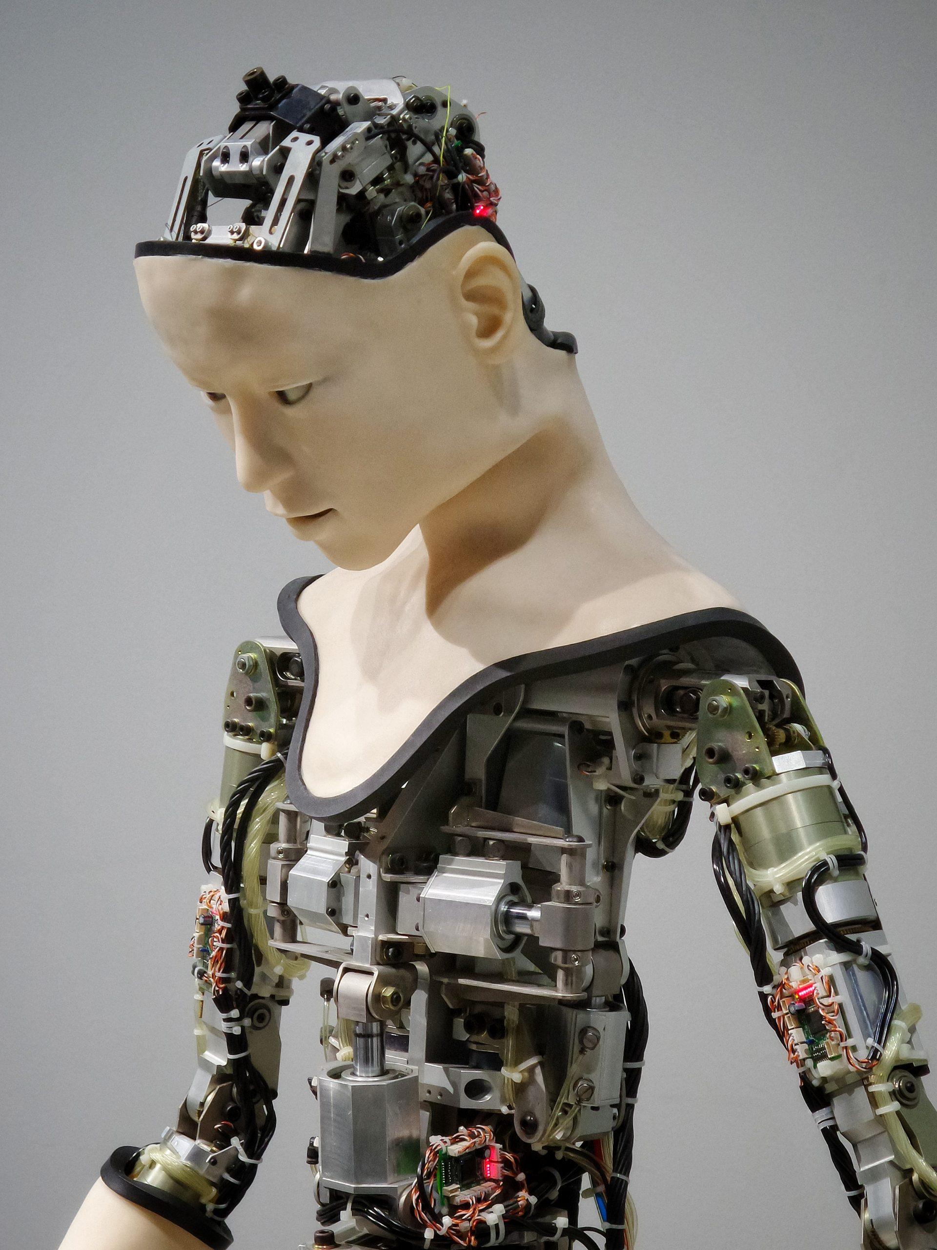 Wytyczne dotyczące sztucznej inteligencji